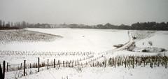 Hertford Snow Day 08-02-07 040