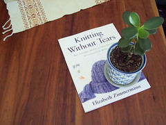 Jade plant with EZ book (no flash)