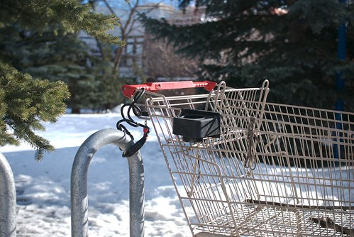 shopping cart #21