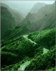 Silence and I (Silvia de Luque) Tags: light espaa mountains verde green luz way andaluca spain bravo searchthebest camino granada sierranevada montaas supershot flickrsbest specland alhambra2006 silviadeluque abigfave colorphotoaward superaplus aplusphoto top20green flickrdiamond shininggreen