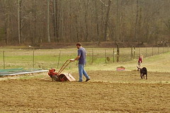 Rob and Ashlee in the Yard 031007 web