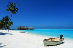 Waiting to go... (mutenostrilsyndrome) Tags: ocean sun tree topf25 island boat lagoon palm resort deck senses gili six maldives spa soneva blueribbonwinner sonevagili p1f1 travelerphotos goldenphotographer