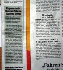 Dresdner Morgenpost vs. Dresdner Neueste Nachrichten (15.3.07)