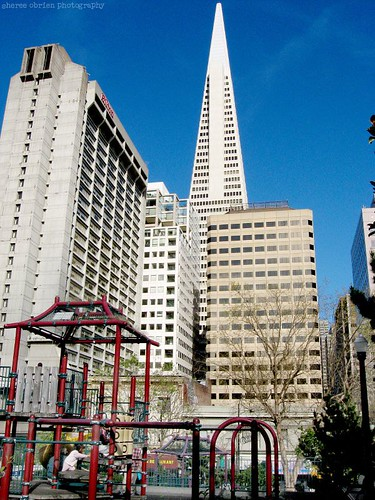 Transamerica building (of course)