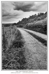 On the wrong path (Sean Bolton (no longer active)) Tags: bw castle monochrome wales mono carmarthenshire track path hill cymru perspective wfc cload dinefwr seanbolton welshflickrcymru ffotocymrucouk ffotocymru