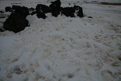 Dirty snow (spi516) Tags: iceland myvatn