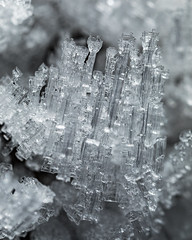 Castle IV (apodemetes) Tags: thun bern schweiz ch frost macro