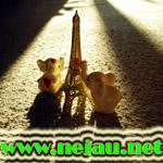 http://farm1.static.flickr.com/153/330827114_1e84060d85_o.jpg