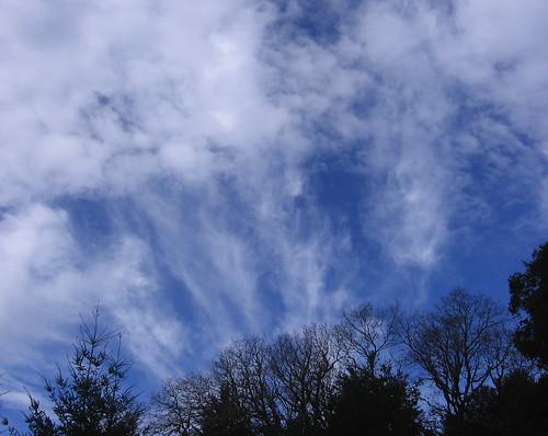 Excellent sky