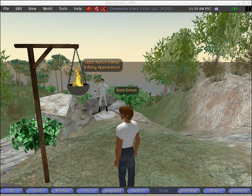 SecondLife on FreeBSD