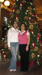 """christmas tree pose • <a style=""""font-size:0.8em;"""" href=""""http://www.flickr.com/photos/70272381@N00/343482777/"""" target=""""_blank"""">View on Flickr</a>"""