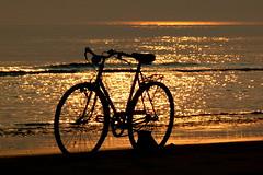 Velocipede (toyota.geo) Tags: sunset sea sun italia tramonto mare panasonic sole venezia bibione bicicletta fz50