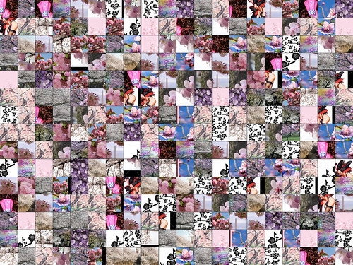 Cherry Blossoms montage