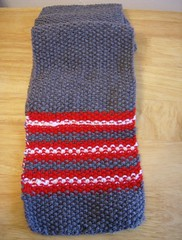 Seed and Stripes Red Scarf #4