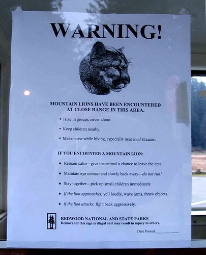 Mountain Lion warning