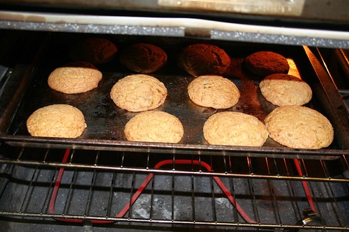 cookie of the week -- gingersnaps