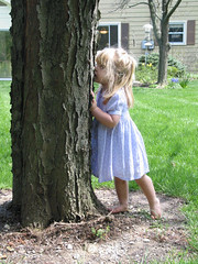 lorelei kissing tree