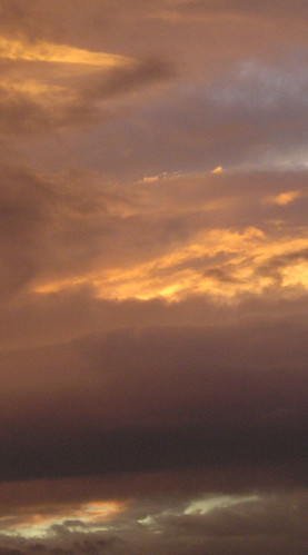 Tras la lluvia , aparecieron los colores