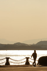 Walking (mrhayata) Tags: sea sky man silhouette japan bay walk  fukuoka kitakyushu wakamatsu     dokai mrhayata