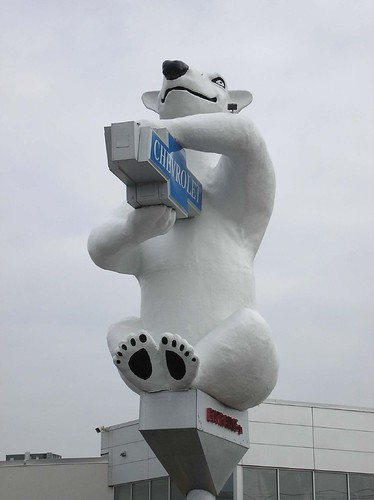 World's Largest Polar Bear