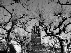 Du Kind, zu dieser heilgen Zeit (amras_de) Tags: winter wedding bw tower art plane hessen grove kunst artnouveau sw darmstadt modernisme artnoveau jugend jugendstil mathildenhhe hain copse hochzeitsturm modernidade stileliber