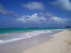 #9418 Flat Island (Popoia) from Kailua Beach (Nemo's great uncle) Tags: bird hawaii  oahu  hi sanctuary birdsanctuary kailua mokuluaislands mokulua flatisland popoia
