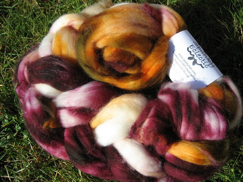 Spunky Eclectic Superwash Merino in Toronto