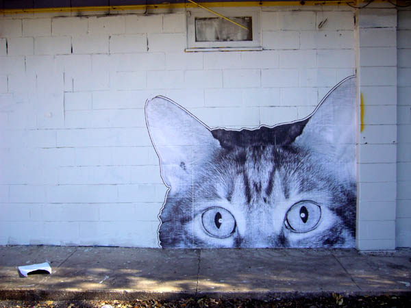 Big Gato