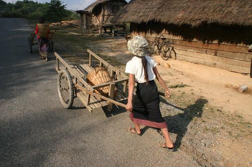 Rural activities...