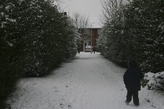 snow-4184 (liltza) Tags: ayres
