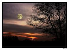 Sunset and moon (baby7) Tags: moon bravo searchthebest blueribbonwinner outstandingshots specnature abigfave karmapotd karmapotw flickrplatinum travelerphotos flickrdiamond frhwofavs