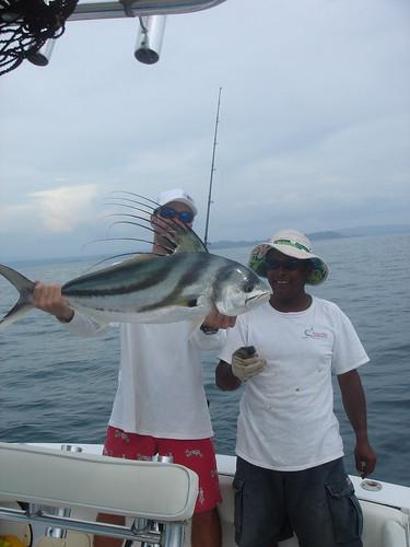 Rooster fish Nicaragua fishing