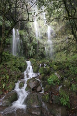 Madeira - Cascades on a rainy day