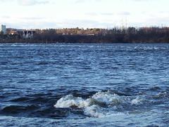 Ottawa River (squiddity of toronto) Tags: winter river ottawa ottawariver