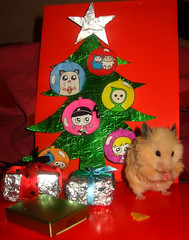 """""""I hope it'll be some tasty food!"""" (pyza*) Tags: pet pets cute animals hamster mammals rodents hamsters"""