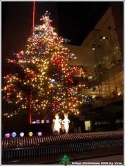 MIKIMOTO 聖誕樹