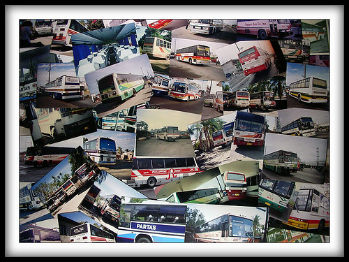 buses, buses, busesssssssssssssss and many bus photos