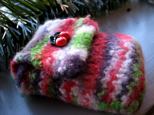 felted camera cozy