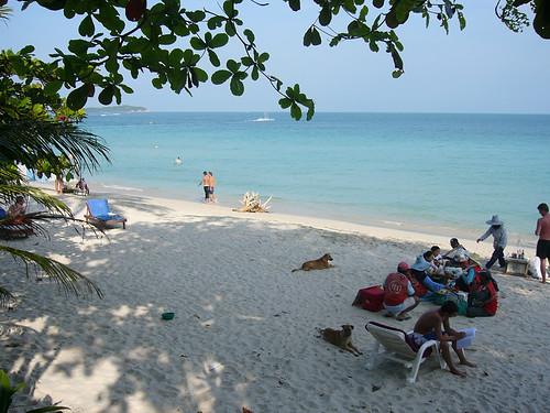 サムイ島-chaweng Beach 4th Jan.070