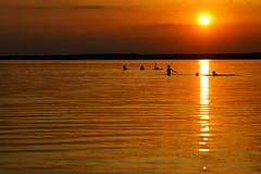 Wasserspiele (lichtmaedel) Tags: sunset swimming gold see sonnenuntergang vorpommern playingkids kummerowersee colorphotoaward lakekummerow lichtmaedelallrightsreserved kerstinenderlein copyrightkerstinenderlein