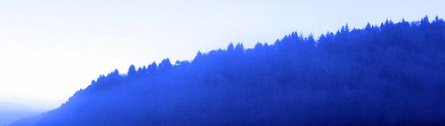 Ridgeline.Freshwater Lagoon.1.8