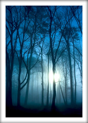 mystical morning blue