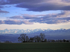View from the Jura to Berner Oberland - by michaelGro