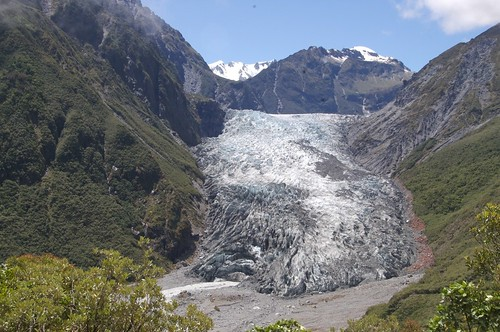 Fox Glacier
