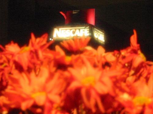 Sirvame café caliente sobre flores