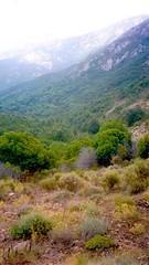 Les derniers mètres à découvert en sortant du tunnel de végétation en arrivant à Bocca a Pertusella