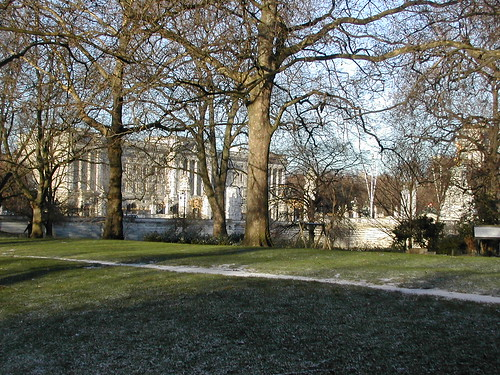 Buckingham Palace through the trees