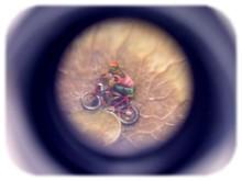 Pulga en bicicleta