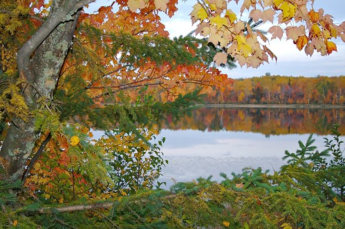 Experience spectacular fall colors in Spicer, MN