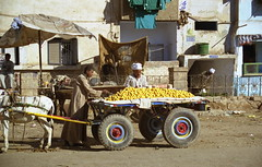 Mercado-Egipto (Rafael Gomez - http://micamara.es) Tags: people leute gente egypt personas mercado su egipto ägypten egitto egypte gens egito egypten مصر mısır エジプト 이집트 agypten египет מצרים egipat ehipto αίγυπτοσ єгипет egjipt อียิปต์